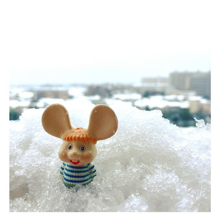 2016年東京の雪とトッポ・ジージョ❄︎